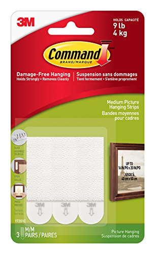 Med Hanging (Command Adhesive CAD17201ES Picture Hanging Strip Med)