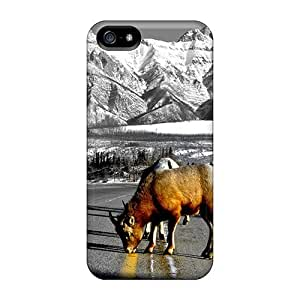 First-class Case Cover For Iphone 5/5s Dual Protection Cover A Beautiful Picture