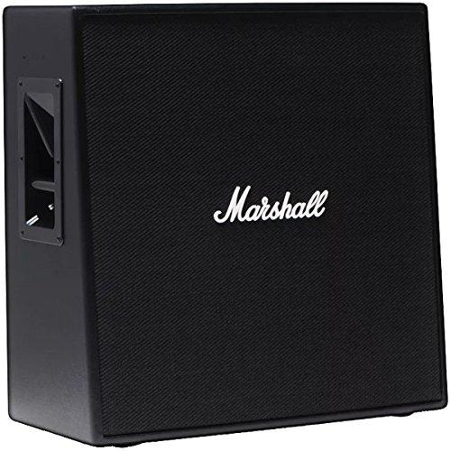 100w Guitar Speaker - 2