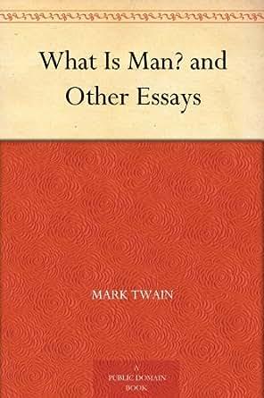 Essay on mark twain