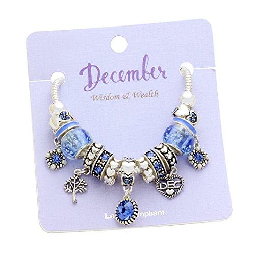 Rosemarie Collections Women's Birth Month Birthstone Glass Bead Charm Bracelet (December)