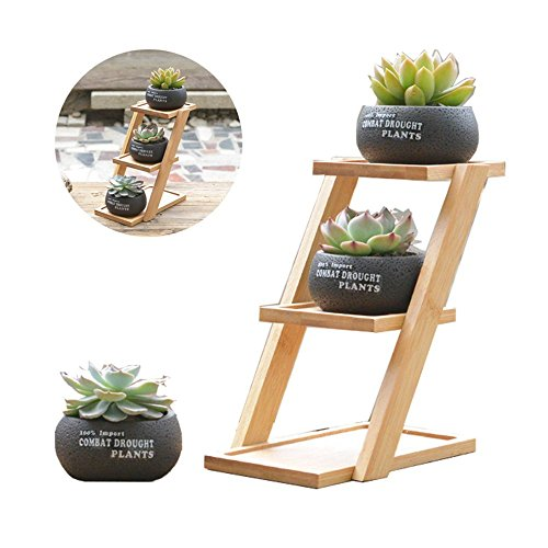 wall plant stand - 1