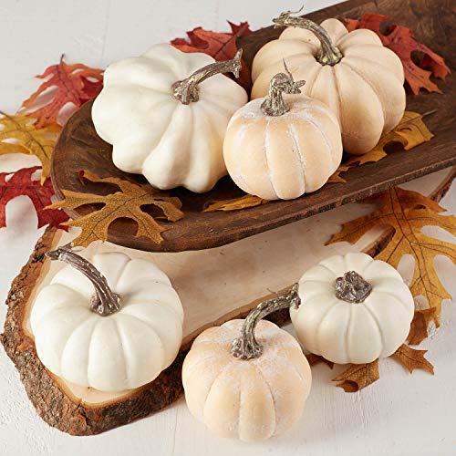Factory Direct Craft Package of 6 Fall Artificial Assorted Creamy White Pumpkins for Halloween, Fall and Thanksgiving…