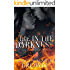 Fire In The Darkness (Darkness Series Book 2)
