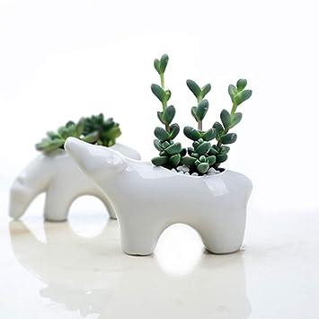 Amazon Egurs Animals White Ceramic Flower Pot Succulent Plant