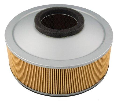 Hiflofiltro HFA2801 Premium OE Replacement Air Filter ()