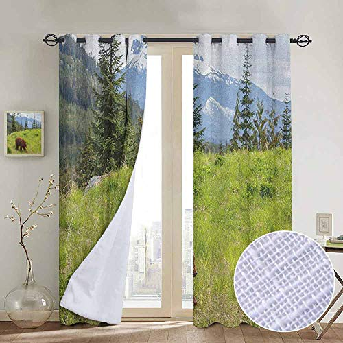 (NUOMANAN Window Blackout Curtains Bear,Wildlife up in The Mountains Theme Furry Animal Carnivore Yellowstone Nature Habitat, Green Brown,for Room Darkening Panels for Living Room, Bedroom 52