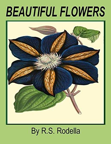 (Beautiful Flowers: Coffee Table Book)