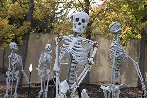 Photo | In keeping with a favorite American autumnal theme, King's Island theme park in Mason, a northeastern suburb of Cincinnati, Ohio, adds spooky Halloween props to its grounds 4 -