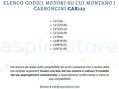 Coppia carboncini per motore aspirante LAMB AMETEK cod 117123-00 e altri codici