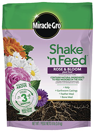 Miracle-Gro 3002310 Shake 'N Feed Rose and Bloom Continuous Release Plant Food by Miracle-Gro