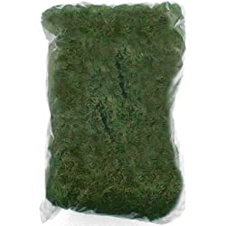 100g Natural Moss, Artifical Plant Decoration Accessory by Neuhaus Decor