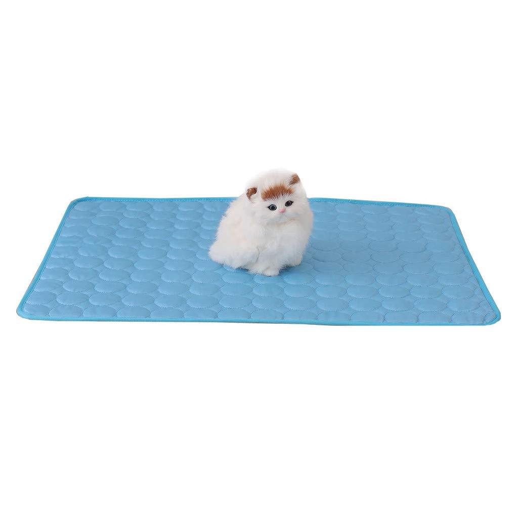 Amazon.com: Islandse_Pet - Alfombrilla de hielo para gato o ...