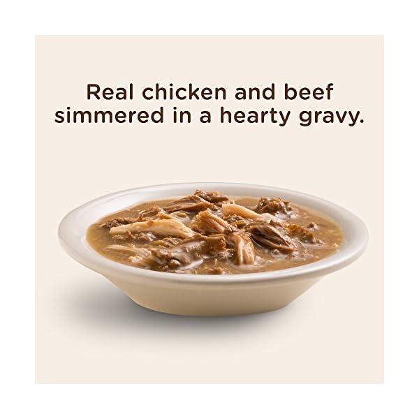 Rachael Ray Nutrish PEAK Wet Dog Food, 3.5 Ounce Tubs, Grain Free