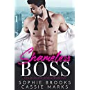 Shameless Boss: A Fake Fiancé Office Romance