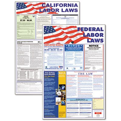 State/Federal Labor Law Legally Required Multi-Colored Poster, 24 x 36, Sold as 1 Each
