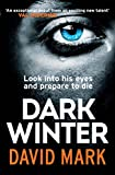Dark Winter by David Mark front cover