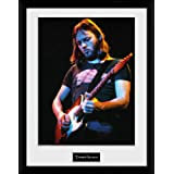 Fine Art Photo Print Pink FLoYd DaVid GiLmour BackStage RoTTerdam HoLLand 13 x 19 Fine Art Photo Print