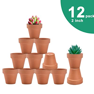 vensovo 2 Inch Terra Cotta Pots with Drainage - 12 Pack Clay Flower Pots, Succulent Nursery Pots Great for Plants, Crafts, Wedding Favor: Garden & Outdoor