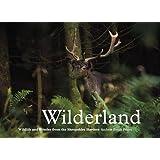 Wilderland, Wildlife and Wonder from the Shropshire Borders