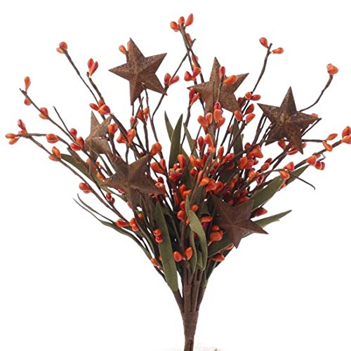 - Group of 4 Harvest Orange Pip Berry and Rusty Star Floral Picks with Whispy Accents