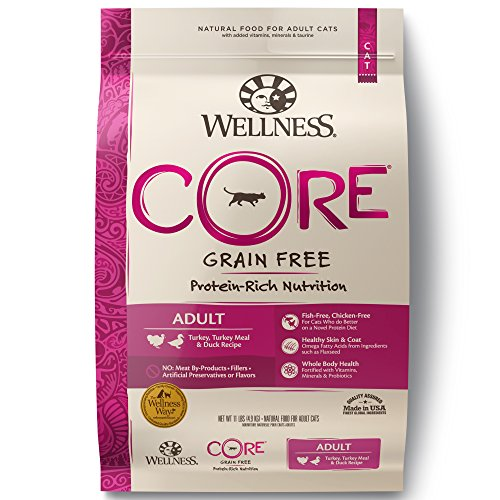 Wellness Core® Natural Grain Free Dry Cat Food, Turkey, Turkey Meal & Duck Recipe, 11-Pound Bag