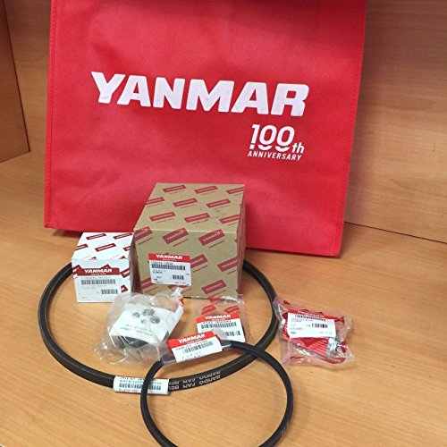 Yanmar Engine Parts (Yanmar 2GM20F 3GM30F Maintenance Minor Kit 128270-12540 119305-35170 104500-55710 124223-42092 25132-003700 104511-78780)