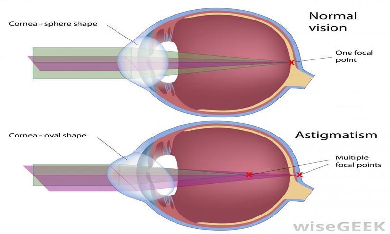 Глаз орган зрения разработка урока