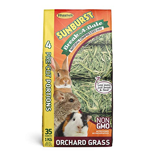 Higgins Sunburst Break-A-Bale Orchard Grass, 35 Oz, Large