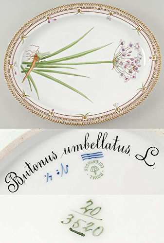 ロイヤルコペンハーゲン フローラダニカ(1790-1960) オーバルサービングプレート Butonus unbellatus L [並行輸入品]   B0132GZXKA