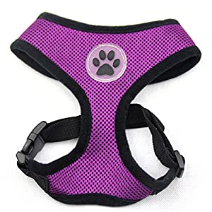BINGPET BB5001 Soft Mesh Dog Harness Pet Walking Vest Puppy Padded Harnesses Adjustable, Purple Small