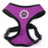 BINGPET BB5001 Soft Mesh Dog Harness Pet Walking Vest Puppy Padded Harnesses Adjustable, Purple Large