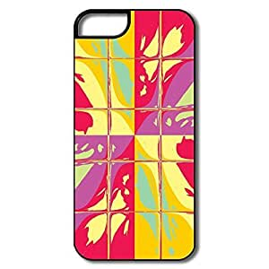 Favorable Colors Blocks Plastic Case For IPhone 5/5s