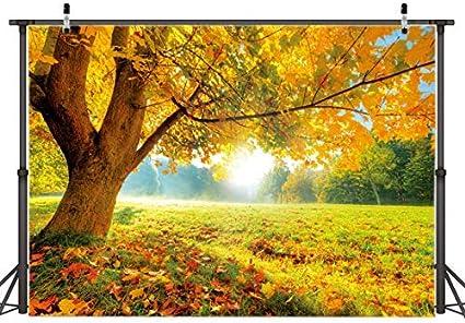 Aiikes 7x5ft Natürlichen Baum Hintergrund Herbst Fallen Kamera