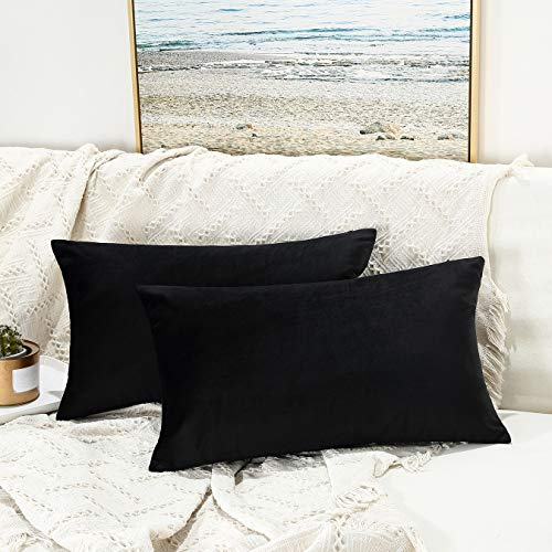 JUSPURBET Velvet Pillow Covers 16x24 Inches,Pack of 2 Throw Pillow Covers for Sofa Couch Bed,Decorative Super Soft Throw Pillow Cases,Black (21x21 Throw Pillow Covers)