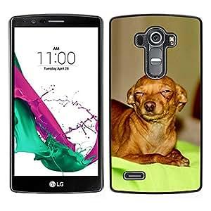 // PHONE CASE GIFT // Duro Estuche protector PC Cáscara Plástico Carcasa Funda Hard Protective Case for LG G4 / Skeptical Chihuahua Canine Pet Canine /