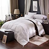 BTWZM 75% Goose Down Comforter, White Duvet Insert Comforter King Size, Natural Materials Hypoallergenic ,100% Cotton Fabric,Box Stitching (King 106-by-90inch)