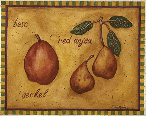 (Pears Bosc Red Anjou Seckel by Andrea Strongwater Laminated Art Print, 15 x 12 inches)