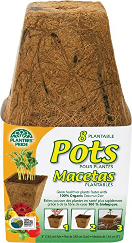 - Planters Pride RSQ03000 Square Fiber Grow Coconut Pots, 3-Inch, Pack of 8