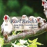 Bird Songs CDN271