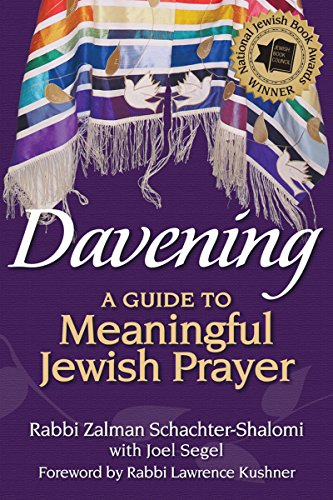 Davening: A Guide to Meaningful Jewish Prayer for sale  Delivered anywhere in USA