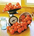 David's Garden Seeds Tomato Paste Bellstar Paste AB757 (Orange) 50 Organic Seeds