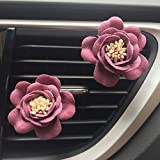 Naladoo Car Accessory,Car Multiflora Flower Air Outlet Fragrant Perfume Clip Air Freshener Diffuser (Red)