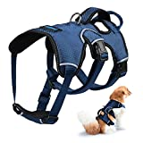 Petacc Breathable Pet Harness Adjustable Dog Chest Strap Practical Dog Vest with D-ring Buckle, Suitable for Medium and Large-sized Dogs