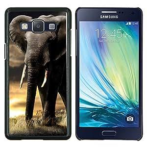 """Be-Star Único Patrón Plástico Duro Fundas Cover Cubre Hard Case Cover Para Samsung Galaxy A5 / SM-A500 ( Trompa de Elefante Sunset Africa Indian Colmillo"""" )"""