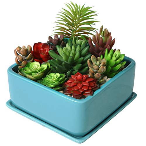 Modern 7 inch Square Ceramic Succulent Planter Pot with Drainage Tray, Window Box & Saucer, Turquoise