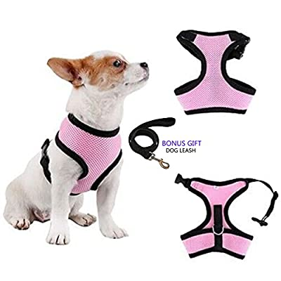 No Pull Dog/Cat Harness and Leash Set for Walking, Padded Dog Vest Harnesses for Puppy Small Dogs/Cats, Cat Dog Training Collar Pink,XS,S