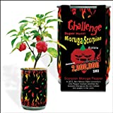 buy Moruga Scorpion Pepper - Grow Your Own Hottest Pepper in the World! - 2,000,000SHU 3oz/85gr now, new 2018-2017 bestseller, review and Photo, best price $8.65