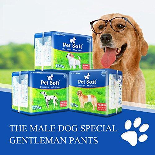pet-soft-disposable-male-wrap-dog-diaper12pcs72countxs