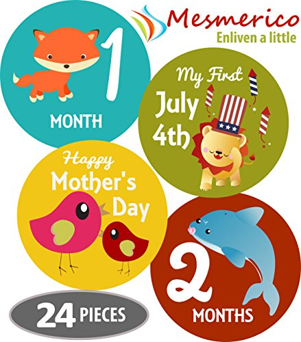 Mesmerico Monthly Holiday Stickers Milestones product image